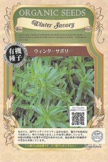 ウィンターサボリーの種〔有機種子・固定種〕 ※無消毒