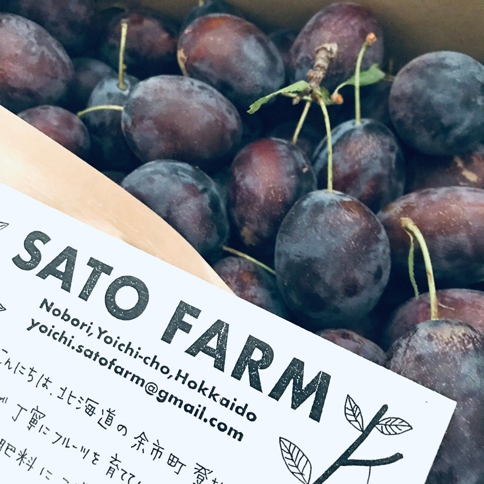 <img class='new_mark_img1' src='https://img.shop-pro.jp/img/new/icons25.gif' style='border:none;display:inline;margin:0px;padding:0px;width:auto;' />SATO FARM fruits