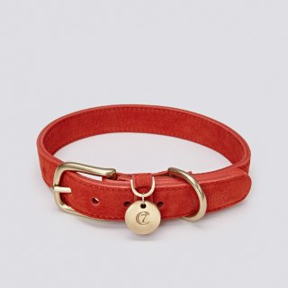 <img class='new_mark_img1' src='https://img.shop-pro.jp/img/new/icons57.gif' style='border:none;display:inline;margin:0px;padding:0px;width:auto;' />DOG COLLAR TIERGARTEN NUBUCK CHERRY RED/CLOUD7(ドッグカラー・ティアガルテン・ヌバック・チェリーレッド/クラウド7)