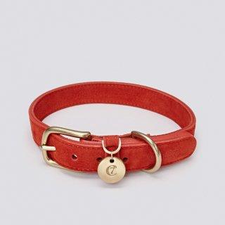 DOG COLLAR TIERGARTEN NUBUCK CHERRY RED/CLOUD7(ドッグカラー・ティアガルテン・ヌバック・チェリーレッド/クラウド7)