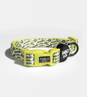 COOLEST DOG EVER COLLAR / PABLO & CO.(クーレストドッグエバー・カラー / パブロ&コー)