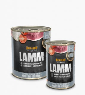 [ SUPER PREMIUM ] LAMB / BELCANDO(ラム / ベルカンド)