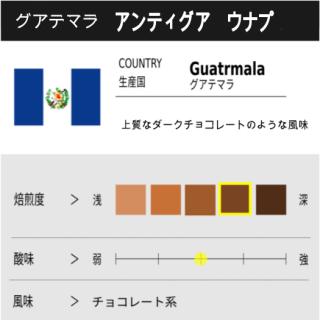 グアテマラ エル インヘルト農園 250g