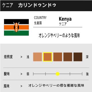 ケニア ケグア250g