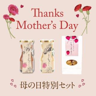母の日特別セット(ジュース:藤稔、いちご ゼリー :もも、いちご、シャインマスカット、クッキー、ドロップ)