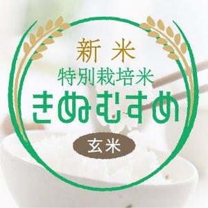 玄米きぬむすめ(特栽米)30kg<精米サービス>