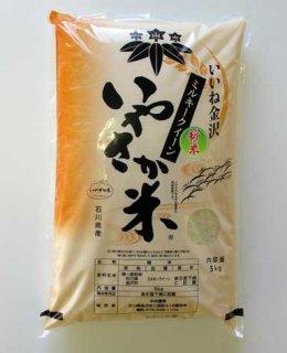 石川県 いやさか米(ミルキークイーン)5kg