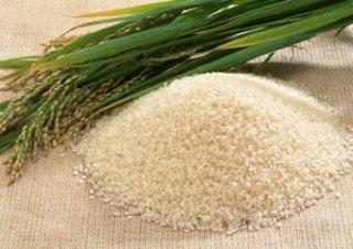 広島県 アキサカリ(特別栽培米)玄米5kg