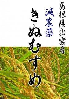 島根県 キヌムスメ 白米5kg