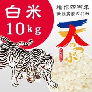 純精米 【会津米天のつぶ】(白米10kg)