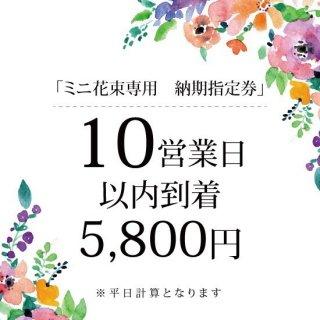 ミニ花束専用【10営業日以内到着】納期指定券