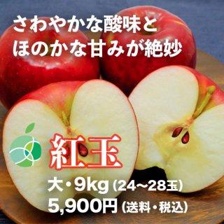 紅玉(りんご)9kg(大・24〜28玉)信州産