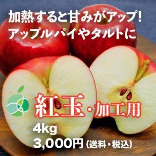 紅玉(りんご)4kg 加工用 信州産