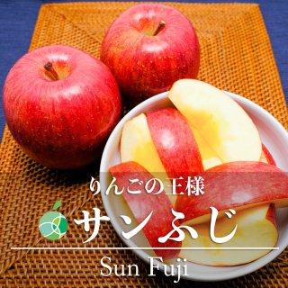 【送料無料】サンふじ(りんご)贈答用 5kg(特大・8〜9玉)長野県産