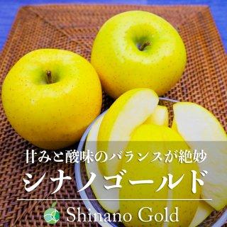 【送料無料】シナノゴールド(りんご)贈答用 約10kg(20〜32玉)長野県・高山村産