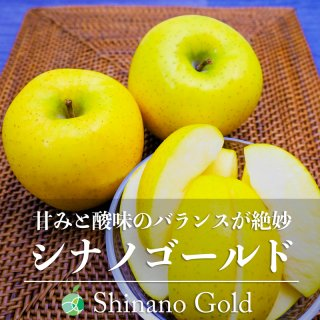 【送料無料】シナノゴールド(りんご)贈答用 約3kg(7〜10玉)長野県・高山村産