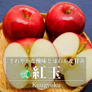 【送料無料】紅玉(りんご)約10kg 長野県産