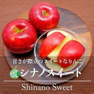 【送料無料】シナノスイート(りんご)贈答用 約3kg(7〜10玉)長野県・高山村産