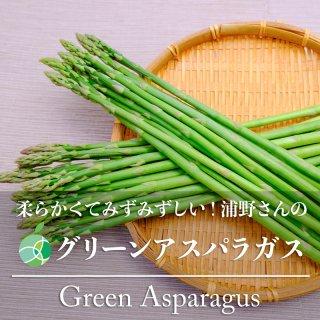 【送料無料】浦野さんのグリーンアスパラガス 約1kg(細)60〜70本 長野県・須坂市産