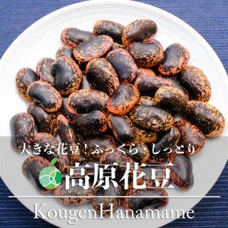 【送料無料】高原花豆(豆)2020年度産 約200g 長野県川上村産