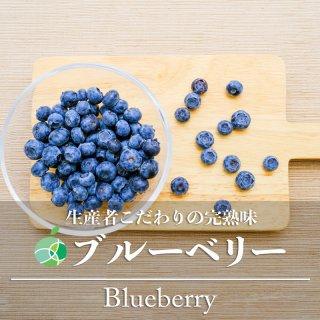 【送料無料】ブルーベリー 栽培時農薬不使用 約200g 長野県長野市産