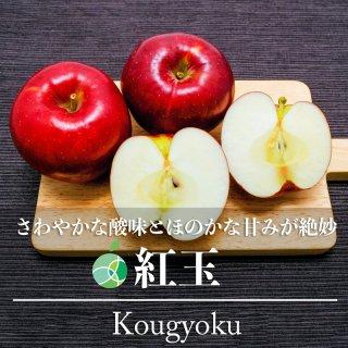 送料無料 紅玉 りんご 約2kg 7〜14玉 長野県産