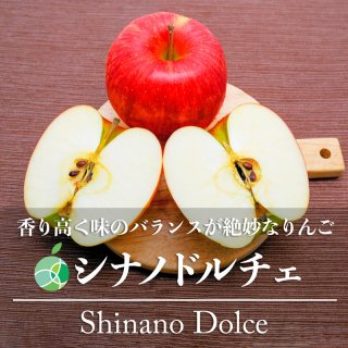 送料無料 シナノドルチェ りんご 贈答用 約3kg 6〜12玉 長野県産