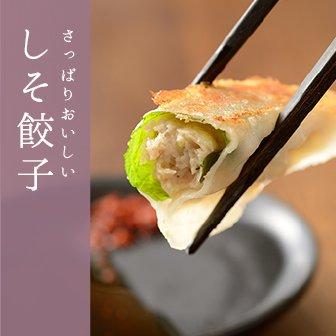 【ご自宅用】餃子4種、食べ比べセット