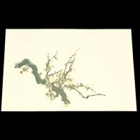 遊膳 NW-03 抗菌尺三まっと日本の四季 梅 【100枚入り】