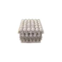 紙製たまごトレイ eggMOLD 30個用 本体/フタ