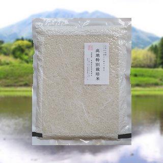 令和3年産ミルキークイーン8kg(2Kg x 4) 無洗米 真空パック