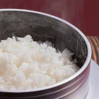 [産地直送]塩野室の滋養米コシヒカリ(3kg×2袋)