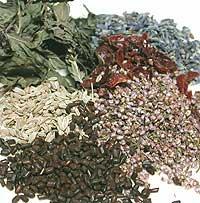 104.クレンジングブレンドハーブティー<br>Cleansing Blend Herb Tea