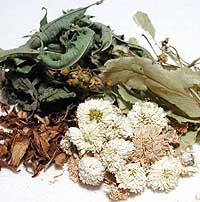 105.センシティブブレンドハーブティー<br>Sensitive Blend Herb Tea / for HSP