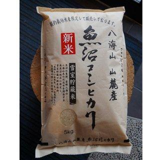八海山 山麓米 コシヒカリ5kg