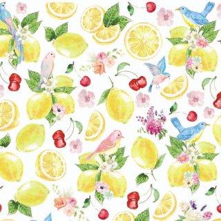 転写紙 『Lemon-レモン』 A4