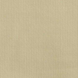 【コーデュロイ】ベーシックシャツコール|細畝コールテン|オフホワイト|
