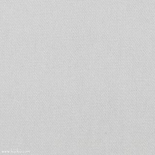 【110cm巾】ベーシック11号帆布|帆布無地|ホワイト|
