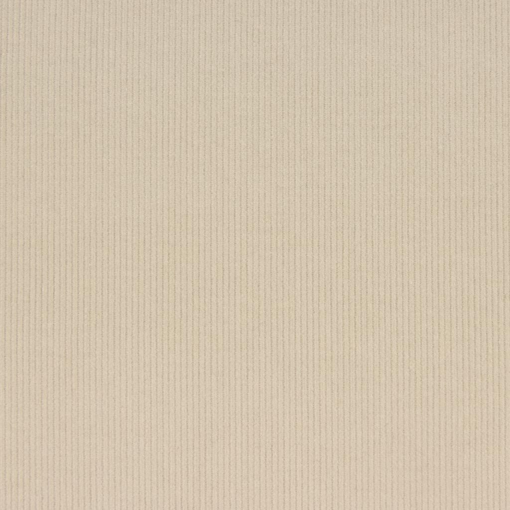 【2021-22AW new】【コーデュロイ】フォグカラーふんわりシャツコール|コールテン生地|エクリュ|