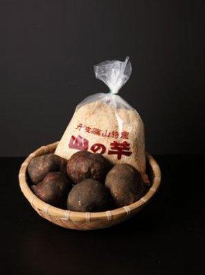 丹波篠山産 山の芋 3kg【等級:秀】(8〜12玉入り)