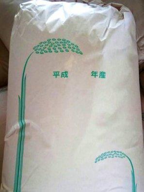 【新米】丹波篠山産 玄米(減農薬 コシヒカリ) 20kg (お好みに精米してお届け)