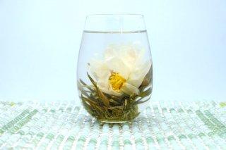 中国工芸茶 5個セット