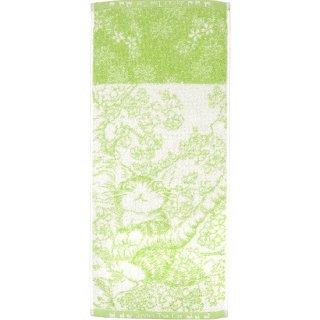 わちふぃーるど 猫のダヤン 制菌フェイスタオル 桜色の風・グリーン