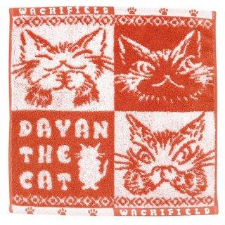 わちふぃーるど 猫のダヤン ふわふわジャガードW/T ダヤンズ・コーラル