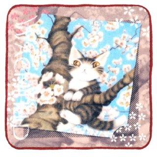 わちふぃーるど 猫のダヤン アートなタオル 桜色の風