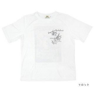 わちふぃーるど 猫のダヤン BOX型半袖T 風 オフW Lサイズ