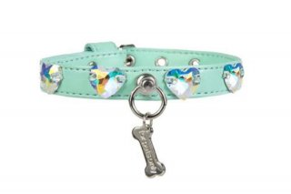 LOVE ME COLLER AQUA【for pets only】