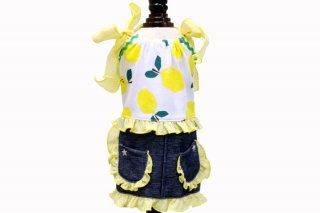 BonBon Citron Dress【Ruban d'or】