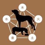 スマイルキャンペーン♪犬の東洋医学生活管理士3級+2級セット