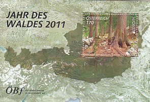 オーストリア・ヨーロッパ・森林・2011・種つき